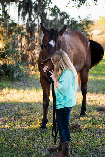 Stephenson E kissing horse.jpg