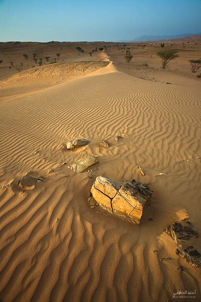 Oman Desert (20).jpg