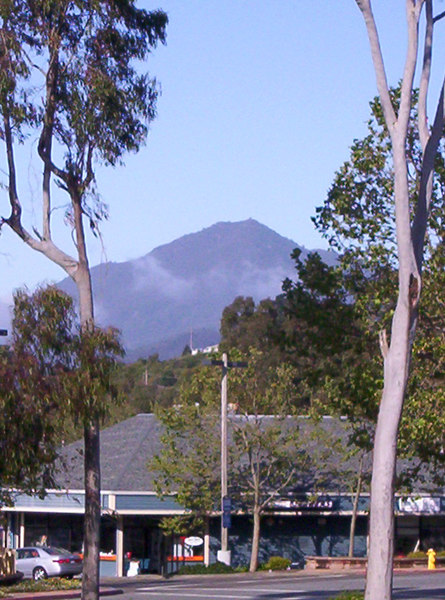 Looking out the Hotel window, was hard to miss Mt Tamalpais