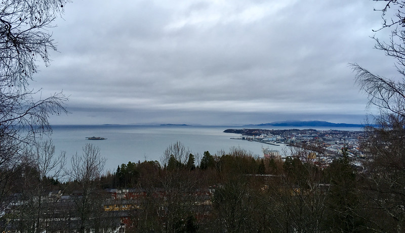 Trondheim from the nearby hill