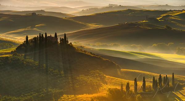 Light & Wine - Landscapes
