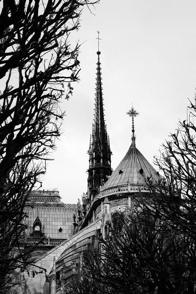 Paris Notre Dame Spire