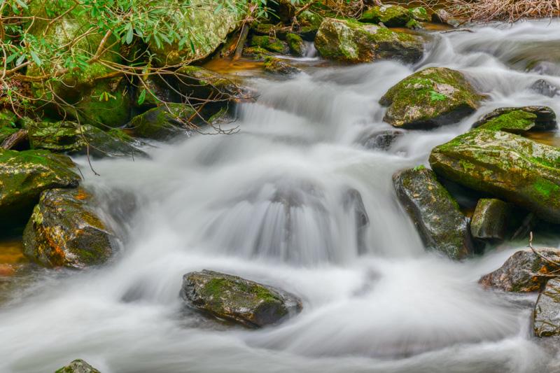 FRESH WATER   64