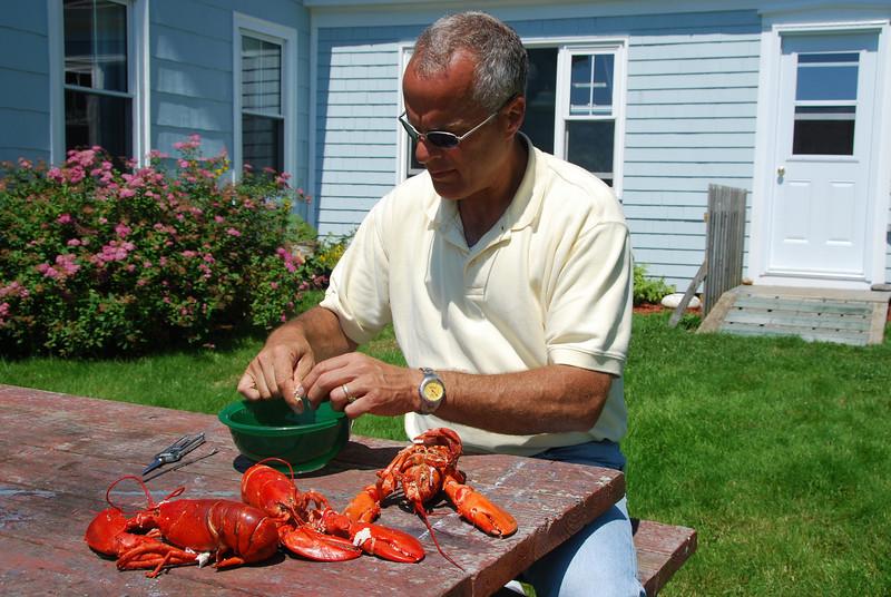 Lobster Shucking - 1