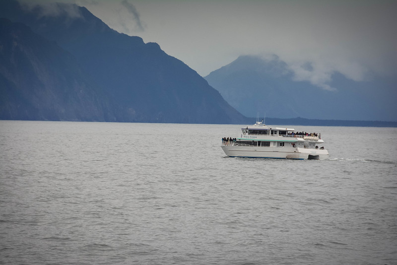 Kenai-Fjords-176.jpg