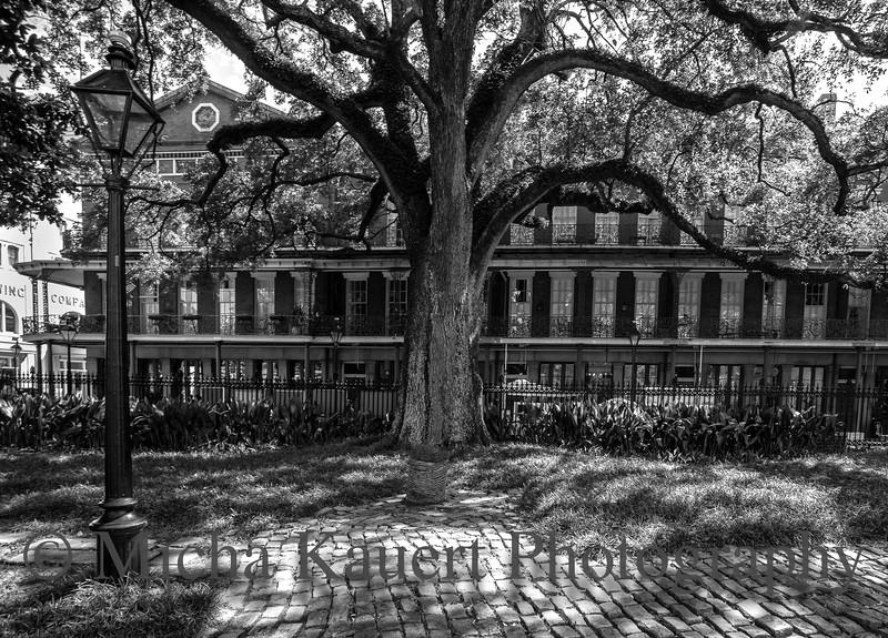 new Orleans 24 wm.jpg