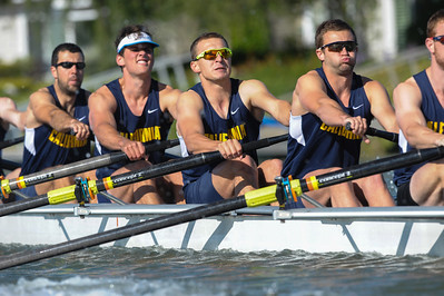 California Men's Rowing  vs. Washington,  April 26, 2014