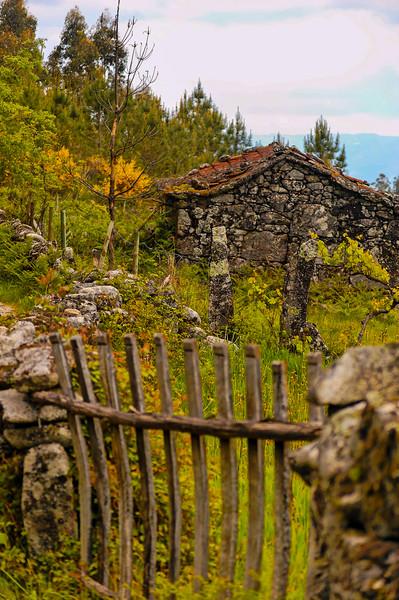 Vouzela-PR2 - Um Olhar sobre o Mundo Rural - 17-05-2008 - 7455.jpg
