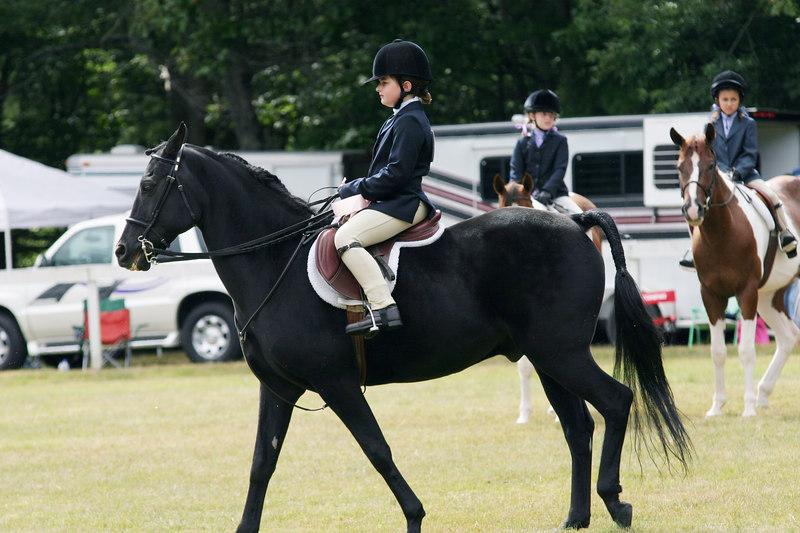 horseshow9-06 008.jpg