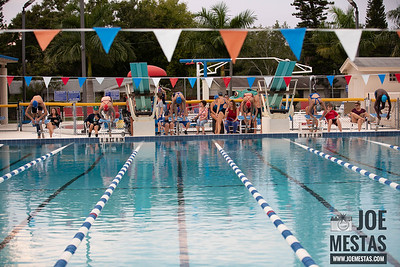 Dixie - PP Swim