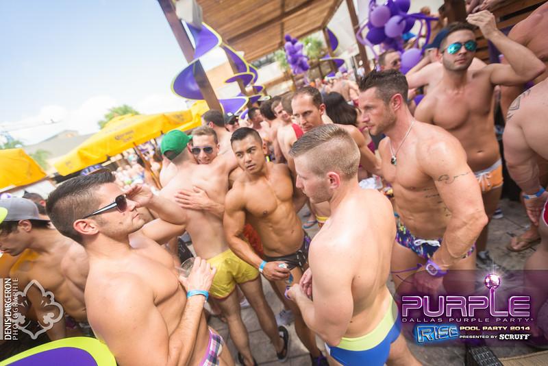 2014-05-10_purple06_560-3255132262-O.jpg