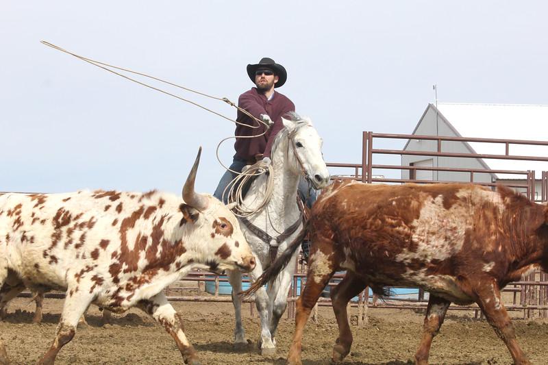 Branding day in Owyhee - Don has a few longhorns!