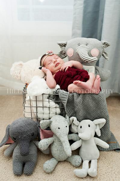 Hillary_Ferguson_Photography_Carlynn_Newborn042.jpg