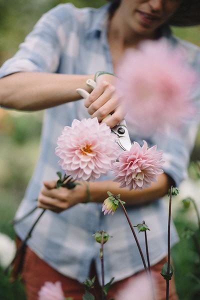 Jaclyn Simpson Photography_A_030.jpg