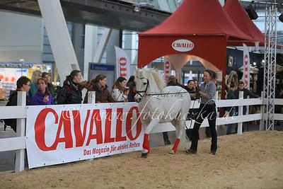 """05.12.2013 Messe """"Pferd und Jagd"""" in Hannover"""