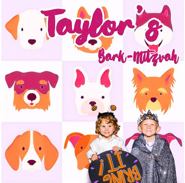 Taylors pawmitzvah-20803.jpg