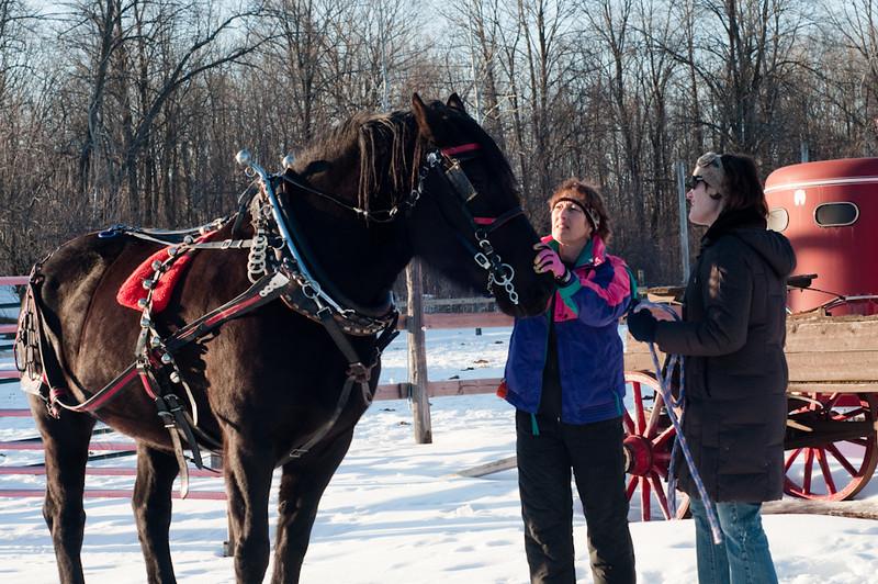 HorseRide-4.jpg