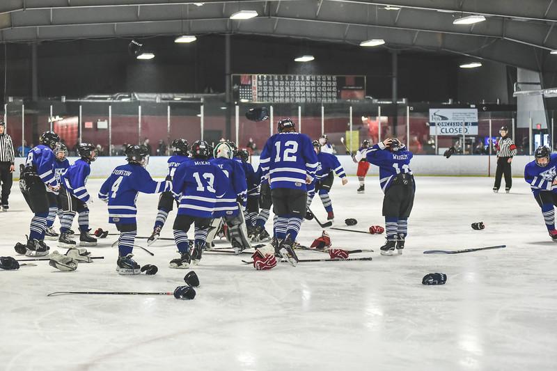Leafs-128.jpg