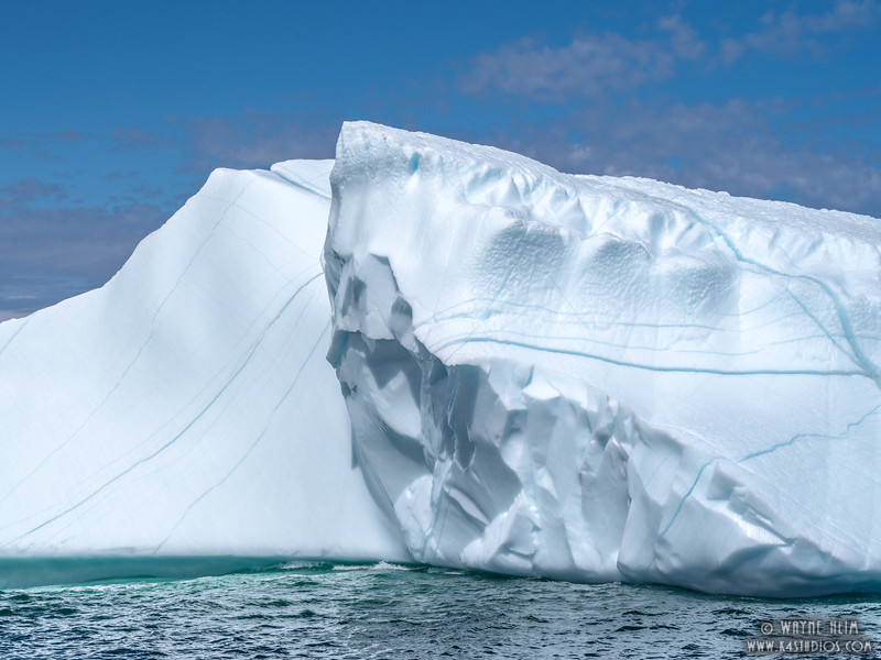 Iceberg 48   Photography by Wayne Heim