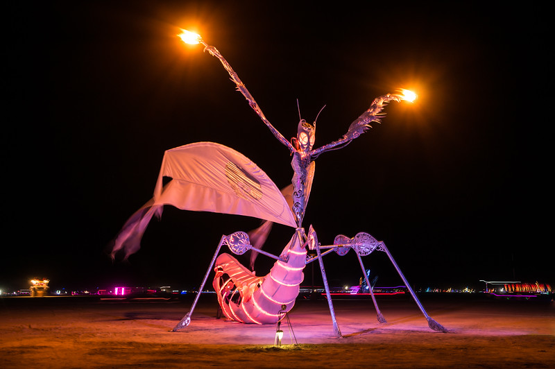 praying-mantis-night-burning-man-2014.jpg