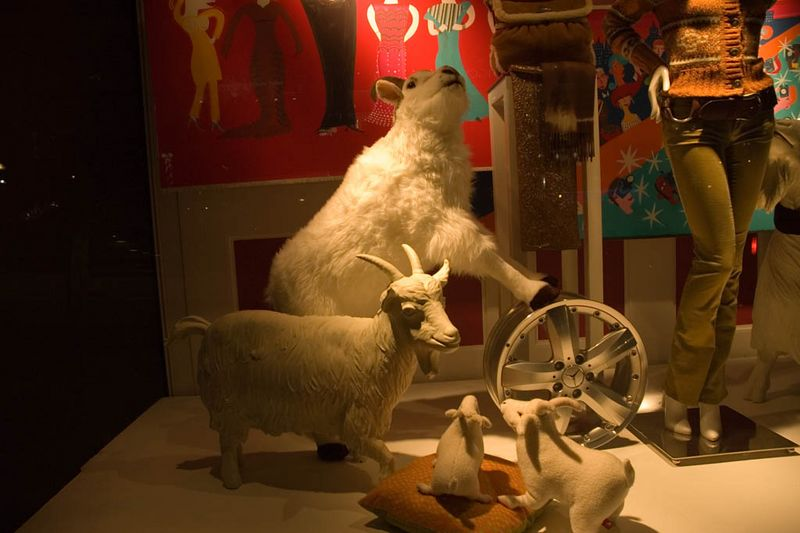 Stephen was really excited to see the 'goats' in the Saks windows at Union Square
