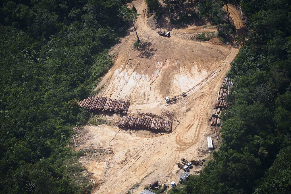 """. View of a log yard in a management area in a Quilombola land, in Oriximina, during an overflight by Greenpeace activists over areas of illegal exploitation of timber, as part of the second stage of the \""""The Amazon\'s Silent Crisis\"""" report, in the state of Para, Brazil, on October 14, 2014. RAPHAEL ALVES/AFP/Getty Images"""