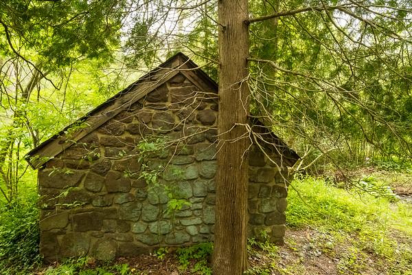 Willow Wood Arboretum