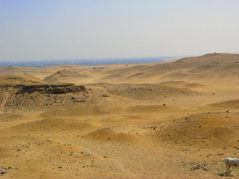 Egypt-74.jpg