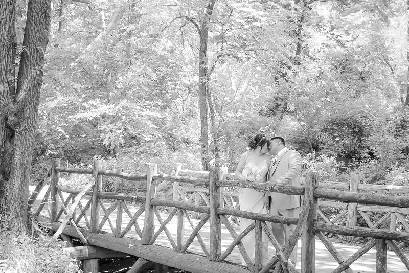 Henry & Marla - Central Park Wedding-50.jpg