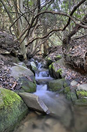 Lake Rabun Waterfalls 3/3/12