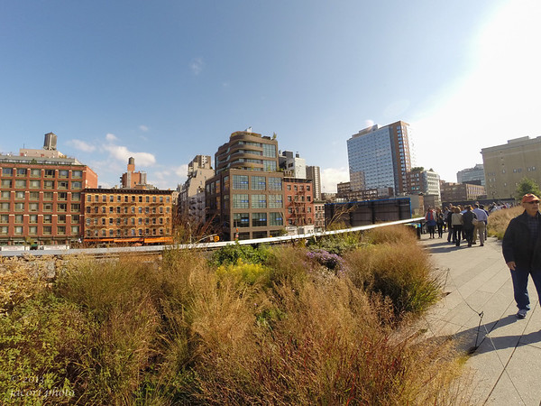 High Line NYC October 2013
