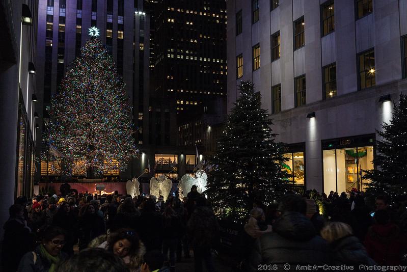2016-12-29_FunWithFamilyAndFriends@NYC_35.jpg