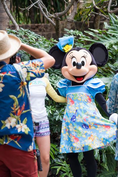 Hawaii Disneyland 2018 FUji-2-461.jpg