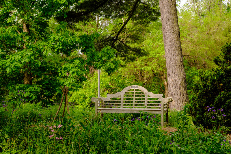 20180512 Green Spring Garden 001.jpg