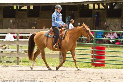 Bradford County Roundup Western Pleasure Ponies