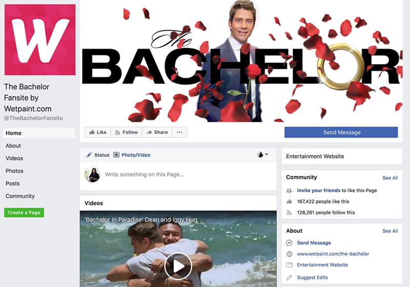 Social Media - Bachelor.png