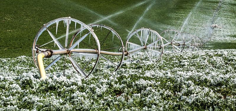 Sprinklers 1, Pleasant View, Colorado, 2000