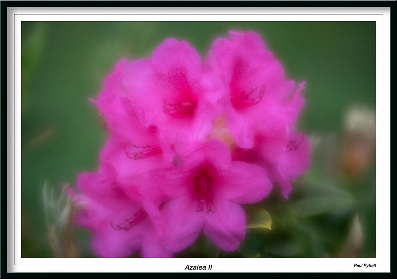 PRT10656-FrameShop.jpg