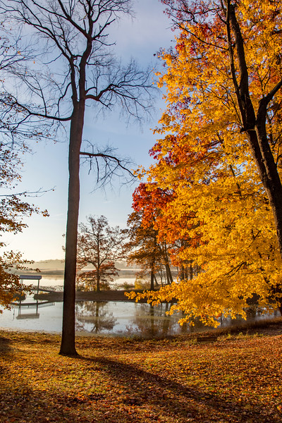 Fall-color-WingfootLakeSP-Nov11o.jpg