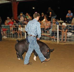 HCF Hog Show
