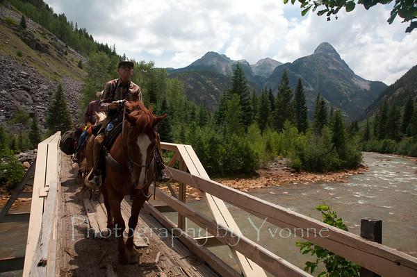 Colorado Trail Horseback Ride