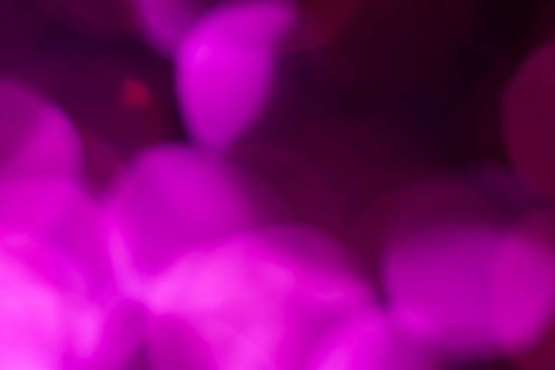 Pink9.jpg