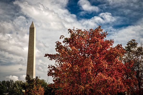 Autumn in DC 2
