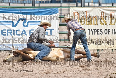 Lincoln County Fair & Rodeo 2018