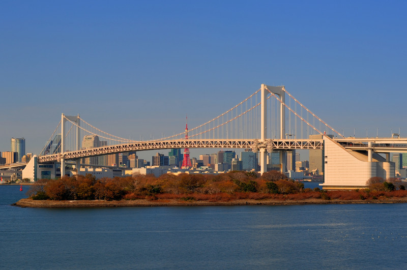 Rainbow Bridge from Daiba  (C) 2010 Brian Neal
