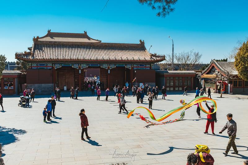 BeijingMarch2019-132.jpg