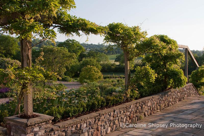 The Organic Gardens, Holt Farm-2237.jpg