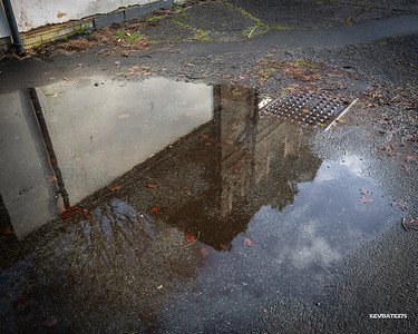 2021 - Puddles in the Park