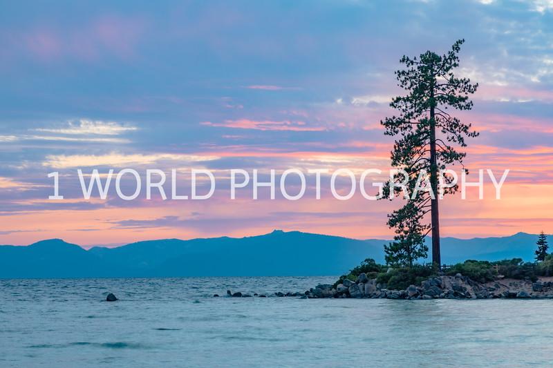 San Fran_Lake Tahoe Trip 2017-1278-66.jpg