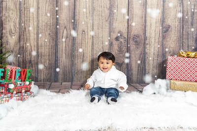 Holiday Family Photos 2020